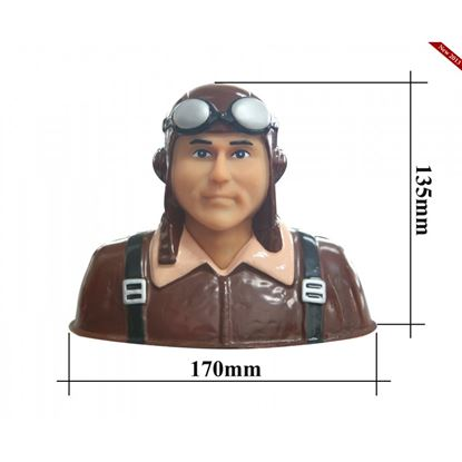 Picture of Seagull PA-14 Pilot