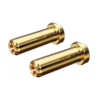 Picture of RC Pro RCP-BM030 5mm Gold Bullet Connector low profile Male 2pcs