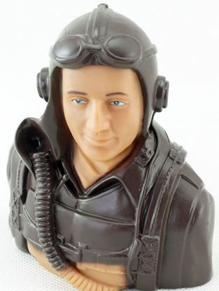 Picture of Dancing Wings LS-5A-2401A Pilot 5A 1:5 scale