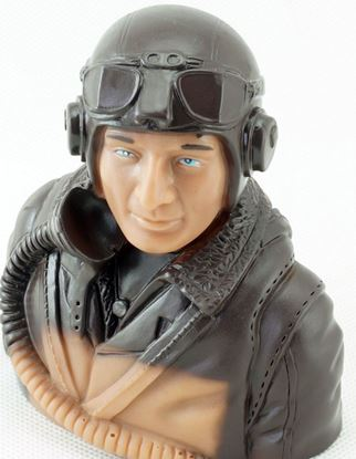 Picture of Dancing Wings LS-5B-2402B Pilot 5B 1:5 scale